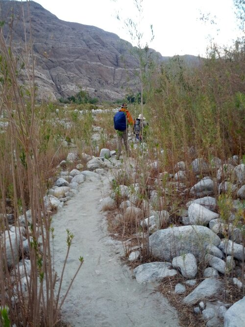 Egg & Ole walk through the amazing trails at Whitewater Preserve